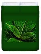 Emerging Hydrangea Leaf Duvet Cover
