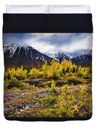 Fall Colours And Auriol Range, Kluane Duvet Cover