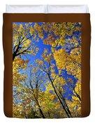 Fall Maple Trees Duvet Cover