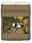 Fulmar Pair Bonding Duvet Cover
