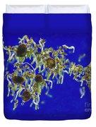 Germinating Fern Spores Duvet Cover