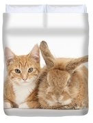 Ginger Kitten With Sandy Lionhead-cross Duvet Cover