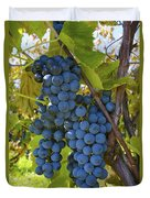 Grapes On A Vine Sutton Junction Quebec Duvet Cover