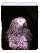 Gray Parrot Duvet Cover