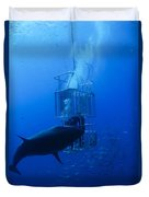 Great White Shark And Divers, Guadalupe Duvet Cover