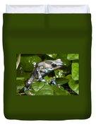 Green And Black Poison Frog Duvet Cover