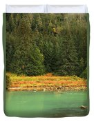 Grizzly Bear Fishing In Chilkoot River Duvet Cover