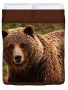 Grizzly Bear, Yukon Duvet Cover