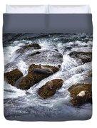 Harbor Seals Duvet Cover