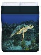 Hawksbill Turtle On Caribbean Reef Duvet Cover