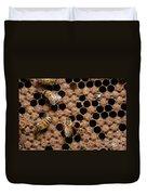 Honey Bees Duvet Cover