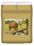 Horse Near Strone Wall In Field Spring Maine Duvet Cover