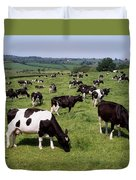 Ireland Friesian Cattle Duvet Cover
