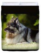 Keeshond Dog, Winnipeg, Manitoba Duvet Cover