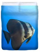 Longfin Spadefish, Papua New Guinea Duvet Cover
