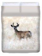 Mule Deer Buck Duvet Cover