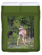 Mule Deer Doe Duvet Cover