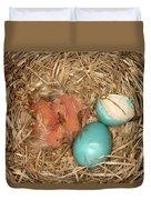 Newborn Robin Nestlings Duvet Cover