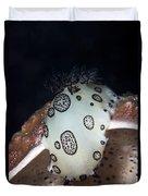 Nudibranch Feeding On A Sponge, Papua Duvet Cover