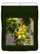 Ocotillo Wild Flower Duvet Cover