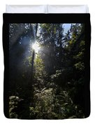 Old Forests At Evo Duvet Cover
