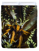 Orange And Brown Elegant Squat Lobster Duvet Cover