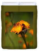 Orange Hawkweed Duvet Cover
