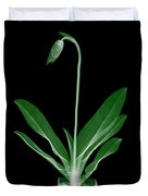 Orchid Plant X-ray Duvet Cover