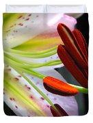 Oriental Lily Hybrid Named Mojave Duvet Cover