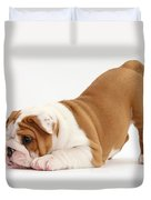 Playful Bulldog Pup Duvet Cover