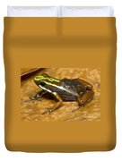 Poison Frog With Eggs Duvet Cover