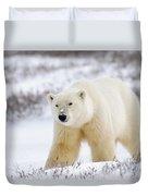 Polar Bear, Churchill, Manitoba Duvet Cover