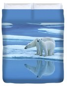 Polar Bear Ursus Maritimus Pair On Ice Duvet Cover