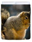 Praying Squirrel  Duvet Cover