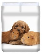 Puppy And Guinea Pigs Duvet Cover
