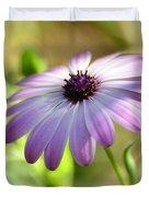Purple Daisy  Duvet Cover