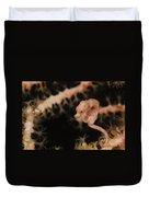 Pygmy Seahorse, Indonesia Duvet Cover