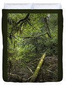 Rain Forest On Vancouver Island Duvet Cover