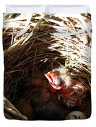 Red-winged Blackbird Babies And Egg Duvet Cover
