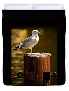 Ring-billed Gull On Pillar Duvet Cover