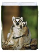 Ring-tailed Lemur Mother And Baby Duvet Cover