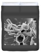 Salmonella Bacteria, Sem Duvet Cover by Science Source