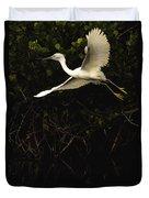 Snowy Egret, Florida Duvet Cover