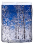 Snowy Path Duvet Cover by Rob Travis