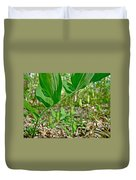 Solomon's Seal Wildflower - Polygonatum Commutatum Duvet Cover