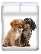 Spaniel & Dachshund Puppies Duvet Cover by Mark Taylor