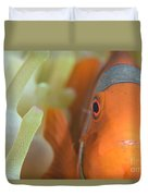 Spinecheek Anemonefish In Anemone Duvet Cover