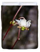 Spotted Wintergreen 2 Duvet Cover