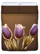 Spring Time Crocus Flower Duvet Cover