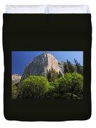Spring Views Of El Capitan Duvet Cover